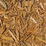 fa-biomassza