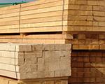 Gyorsuló ütemben nőtt a fakitermelés és a faipari termékek előállítása