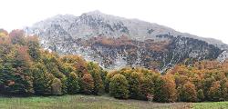 A kopárnak tartott Görögországban több erdő van, mint Magyarországon
